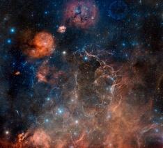 Vela supernova remnant
