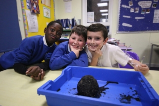 Comets at Castledown Primary School, Hastings, East Sussex