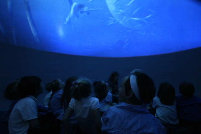 children watching a planetarium film