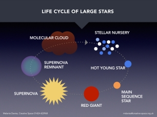 Life cycle of large stars