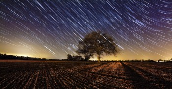 Star trails over countryside